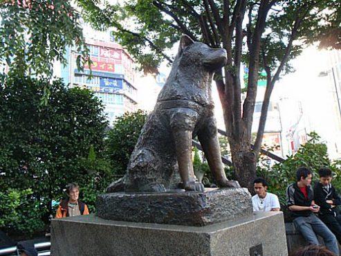 【ポケモンGO】24時間ずっと激しいバトルが起きている日本最強ジムが判明 / 渋谷ハチ公前